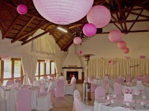 Baby shower pink room decor